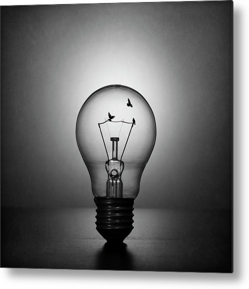 Creative Edit Metal Print featuring the photograph Fly To The Light by Victoria Ivanova