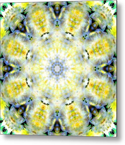 Rainbow Metal Print featuring the photograph Gardenia Mandala by Susan Bloom