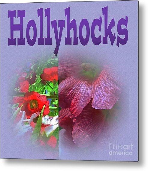 Hollyhocks Metal Print featuring the photograph Hollyhocks by Tina M Wenger