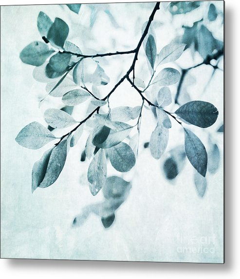 Foliage Metal Print featuring the photograph Leaves In Dusty Blue by Priska Wettstein