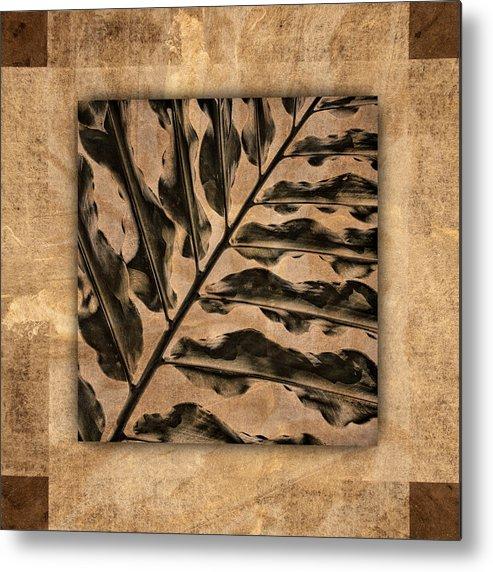 Maui Metal Print featuring the photograph Maui Tropic Brown by Carol Leigh