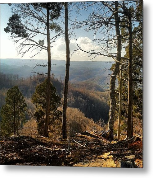 Metal Print featuring the photograph Mountain by Alison McCarty