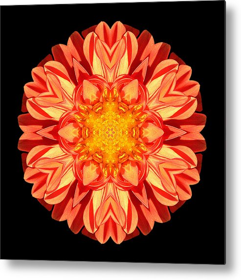 Flower Metal Print featuring the photograph Orange Dahlia Flower Mandala by David J Bookbinder