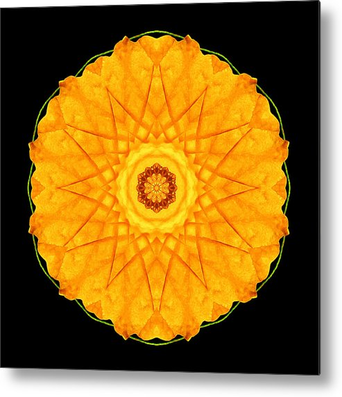 Flower Metal Print featuring the photograph Orange Nasturtium Flower Mandala by David J Bookbinder