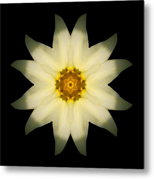 Flower Metal Print featuring the photograph Pale Yellow Daffodil Flower Mandala by David J Bookbinder
