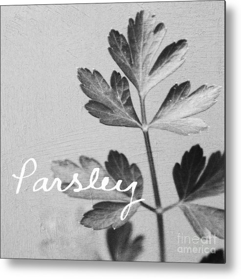Parsley Metal Print featuring the mixed media Parsley by Linda Woods
