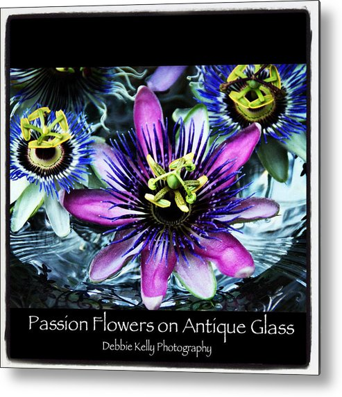 Passion Flowers Metal Print featuring the photograph Passion Flower Poster by Debbie Kelly