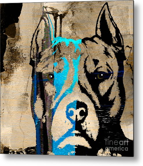 Pitbull Metal Print featuring the mixed media Pitbull by Marvin Blaine