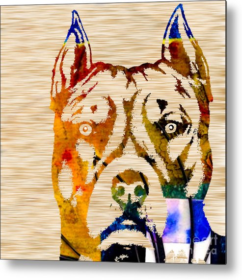Pit Paintings Mixed Media Metal Print featuring the mixed media Pitbull Powerhouse by Marvin Blaine