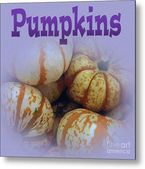 Pumpkins Metal Print featuring the photograph Pumpkins by Tina M Wenger