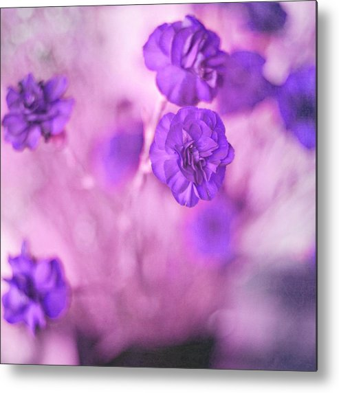 Pretty Flowers Metal Print featuring the photograph Purple Flowers by Marisa Horn