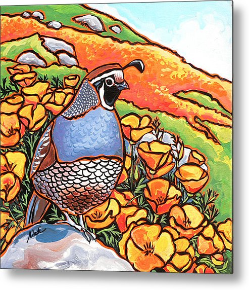 California Poppies Metal Print featuring the painting Quail Poppies by Nadi Spencer