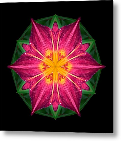 Flower Metal Print featuring the photograph Red And Yellow Daylily I Flower Mandala by David J Bookbinder