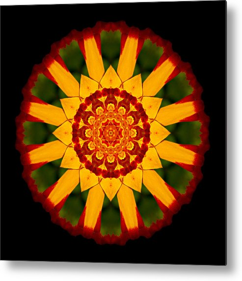 Flower Metal Print featuring the photograph Red And Yellow Marigold V Flower Mandala by David J Bookbinder