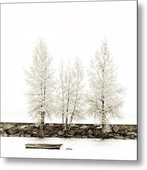 Autumn Metal Print featuring the photograph Sepia Square Diptych Tree 12-7693 Set 1 Of 2 by U Schade