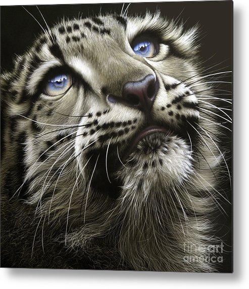 Snow Leopard Cub Metal Print featuring the painting Snow Leopard Cub by Jurek Zamoyski