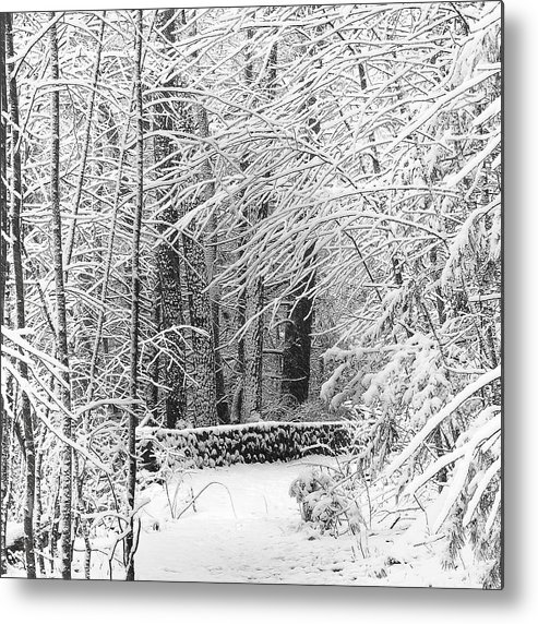 Snow Metal Print featuring the photograph Snow Wall by Jonathan Steele