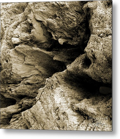 Olympic Peninsula Wa Metal Print featuring the photograph Stonewood Canyon - Square - Sepia Tone - Wonderwood Collection - Olympic Peninsula Wa by Craig Dykstra