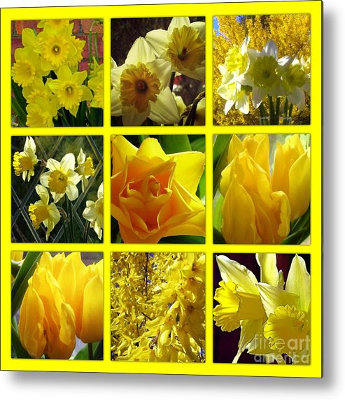 Sunny Metal Print featuring the photograph Sunshine Gold Picture Window by Joan-Violet Stretch