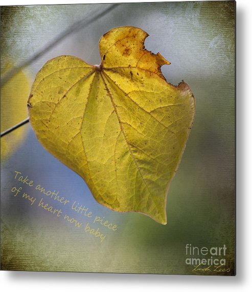 Love Metal Print featuring the photograph Take Another Little Piece Of My Heart by Linda Lees