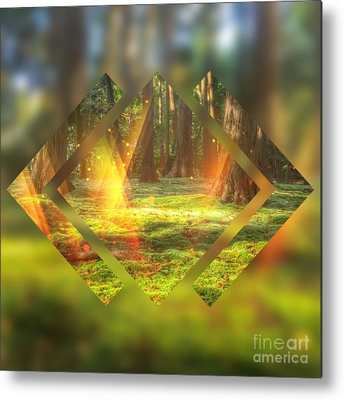 Magic Forest Metal Print featuring the digital art Take Me To The Magic Forest by Beverly Claire Kaiya