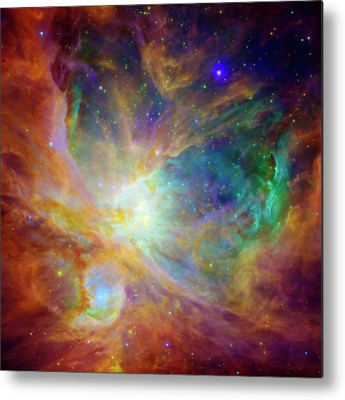 Universe Metal Print featuring the photograph The Hatchery by Jennifer Rondinelli Reilly - Fine Art Photography