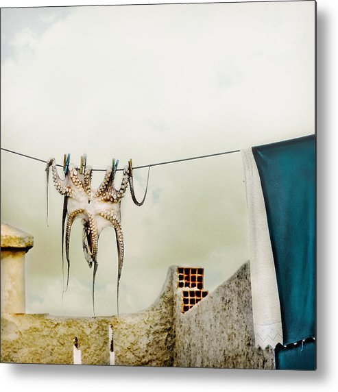 Octopus Metal Print featuring the photograph Tote Hose by Ambra