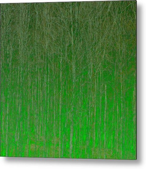 Abstract Metal Print featuring the digital art Trees by Peter Tellone