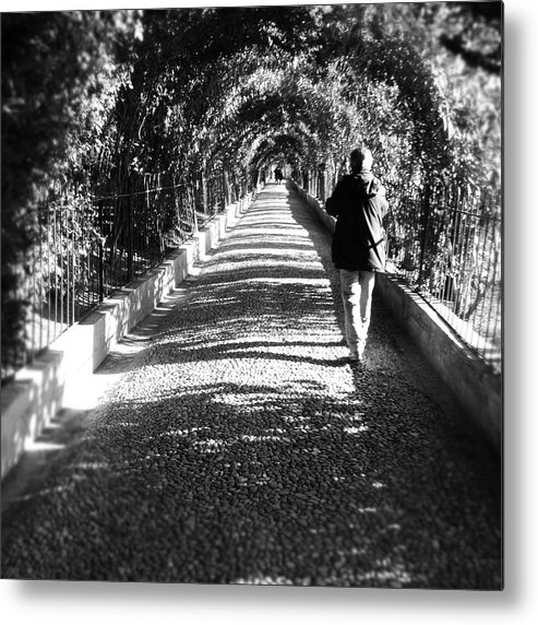 Plants Metal Print featuring the photograph Walkway Of Wonder II by Hannah Rose