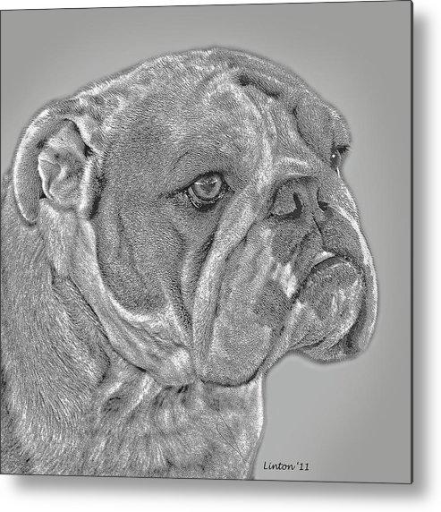 English Bulldog Metal Print featuring the digital art English Bulldog by Larry Linton