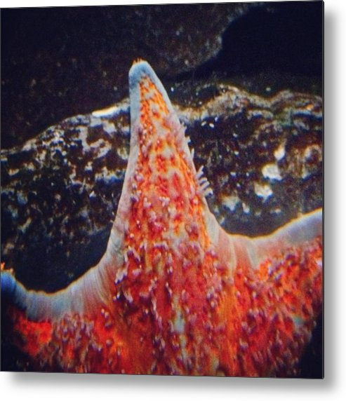 Mobilephotography Metal Print featuring the photograph Instagram Photo by Pete Michaud