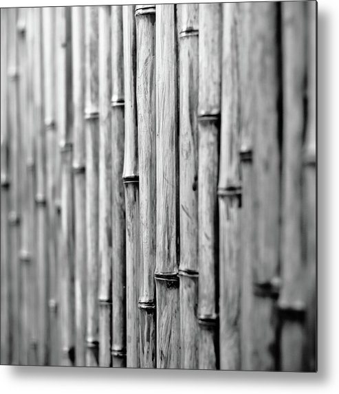 Square Metal Print featuring the photograph Bamboo Fence by George Imrie Photography
