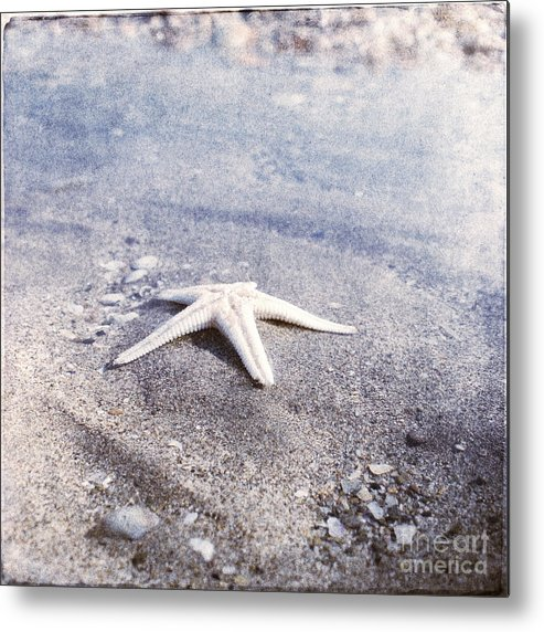 Bright Star Fish Beach Shore Sand Pebble Metal Print featuring the photograph Bright Star by Paul Grand
