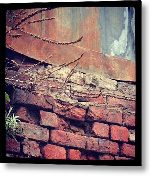 Metal Print featuring the photograph Contrasting Materials by Chris Jones