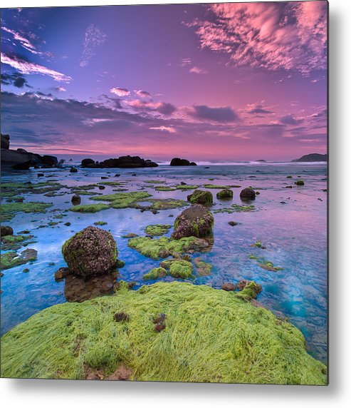 Square Metal Print featuring the photograph Green Moss Covered Rocks At Sunrise by AndreLuu