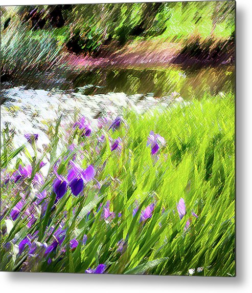 Iris Metal Print featuring the photograph Iris And Water by Linde Townsend