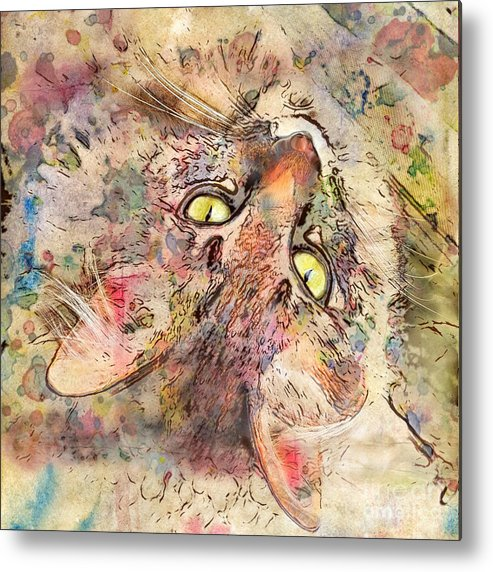 Cats Metal Print featuring the digital art Kitty Fluffs by Marilyn Sholin