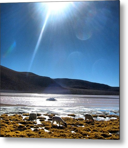 Metal Print featuring the photograph Laguna Verde by Marie-Claude Charron
