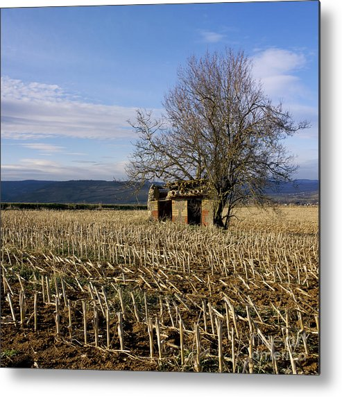 Zea Metal Print featuring the photograph Old Hut Isolated In A Field. Auvergne. France by Bernard Jaubert