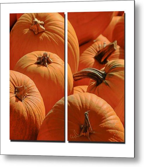 Pumpkin Metal Print featuring the photograph Pumpkin Pumpkin by Michael Flood