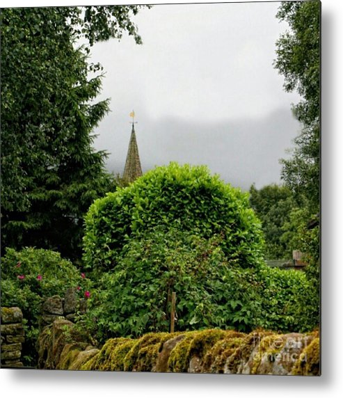 Hedge Metal Print featuring the photograph Steeple by YoursByShores Isabella Shores