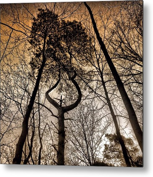 Love Metal Print featuring the photograph #tagstagram .com #me #implus_daily by Pete Michaud