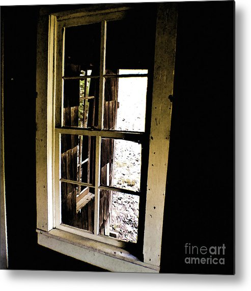 Finch Metal Print featuring the photograph Through The Looking Glass by Cris Hayes