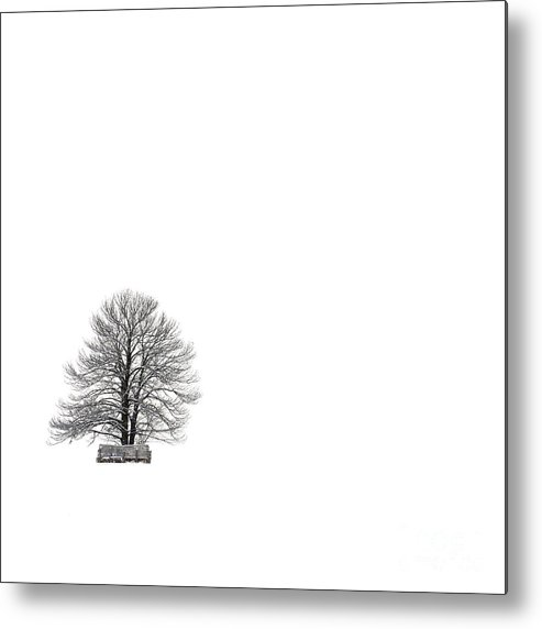 Landscape Metal Print featuring the photograph Tree Isolated Under The Snow In The Middle Field In Winter. by Bernard Jaubert