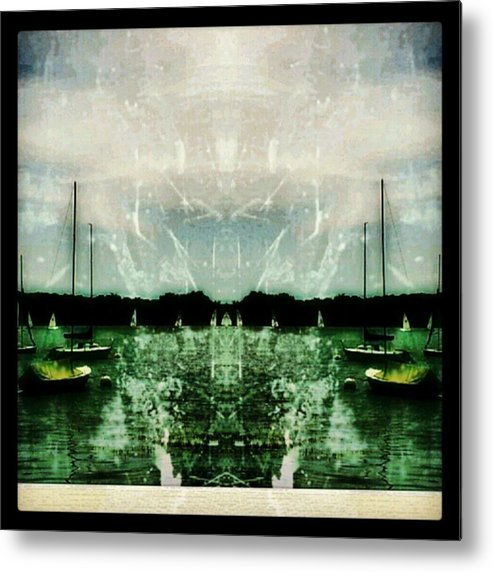 Metal Print featuring the photograph Vipertide. ©2012 Artemis Sere by Artemis Sere
