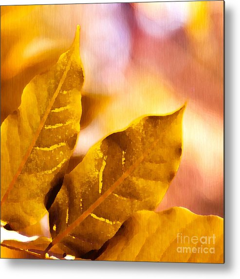 Fall Metal Print featuring the drawing When Leaves Turn Gold by Artist and Photographer Laura Wrede