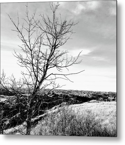 Rural Metal Print featuring the photograph Landscape by Justin Parkinson
