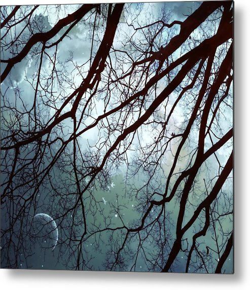 Night Sky Metal Print featuring the photograph Night Sky In The Woods by Marianna Mills