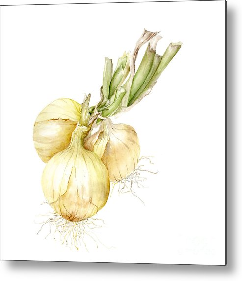 Farmers Market Metal Print featuring the painting Onions by Fran Henig