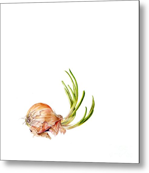 Shallot Metal Print featuring the painting Shallot by Fran Henig
